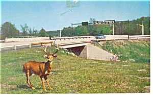 PA Turnpike Howard Johnson Postcard (Image1)