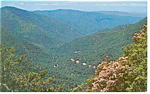 US 441 in Great Smoky Mountains National Park TN Postcard p8621 (Image1)