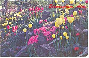 Birmingham Alabama Vestavia Hills Flowers Postcard p8714 (Image1)