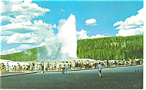 Old Faithful Geyser, Yellowstone Park Postcard (Image1)