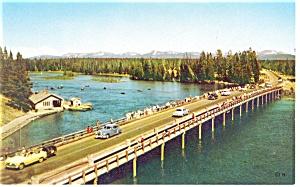 Yellowstone Lake, Fishing Bridge Postcard Old Cars (Image1)