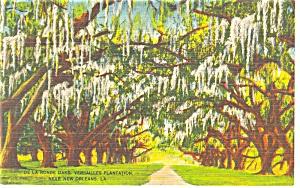 New Orleans,LA, Versailles Plantation Linen Postcard (Image1)
