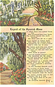 Legend of the Spanish Moss Linen Postcard (Image1)