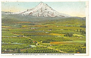 Mt Hood Or Union Pacific Rr Postcard P9194 1928