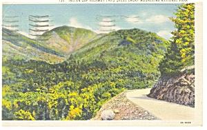 Indian Gap Highway Great Smoky Park Postcard p9223 (Image1)