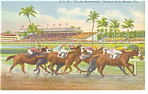 Hialeah Race Track Grandstand Miami Linen Postcard p9227 (Image1)