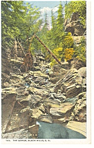 The Gorge, Black Hills, SD Postcard (Image1)