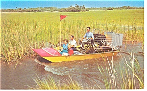 Air Boating in the Everglades  Postcard p9701 (Image1)