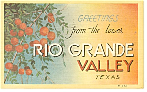 Greetings From Rio Grande Valley Texas Postcard P9776