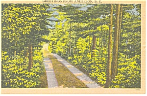 Anderson SC Tree Lined Road Linen Postcard p9895 (Image1)