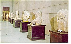 The Parthenon TN Elgin Marbles Postcard p9954 (Image1)