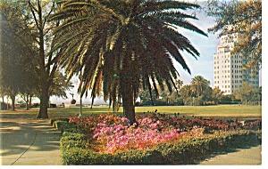 Jacksonville FL Memorial Park Postcard p9977 (Image1)