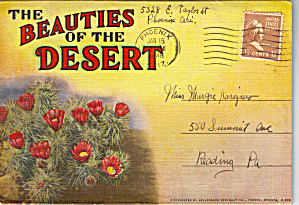 Beauties Of The Desert, Arizona Souvenir Folder Sc0620