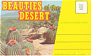 Beauties Of The Desert Souvenir Folder Sf0034