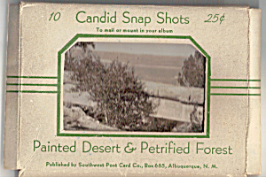 Painted Desert Petrified Forest Souvenir Folder Sf0439