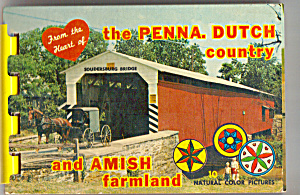 Pennsylvania Dutch Country Amish Famland Sf0474