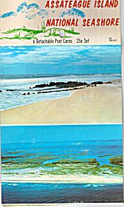 Assatrague Island VA National Seashore Postcards sf0541 (Image1)