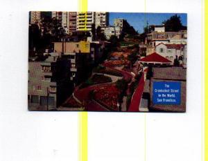 Lombard St San Francisco CA Postcard t0029 (Image1)