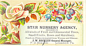 Star Nursery Agency Trade Card