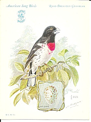 Singer Sewing Machines Red Breasted Grosbeak Trade Card Tc0234