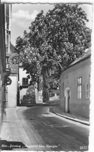 Vienna Austria Street ScenePostcard (Image1)