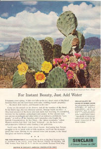 Sinclair Oil Big Bend National Park Ad W0392