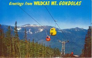 Wildcat MT NH Gondolas Postcard w0762 (Image1)