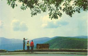 Shenandoah National Park VA Postcard w0775 (Image1)