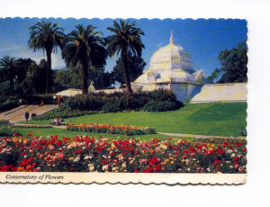 Golden Gate Park San Francisco Ca Postcard X0027