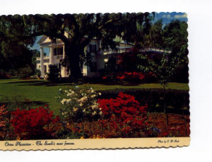 Orton Plantation NC Postcard x0029 (Image1)