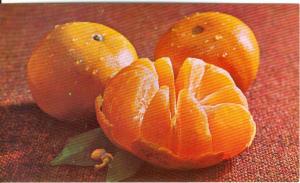 Honey Tangerine Postcard x0071 (Image1)