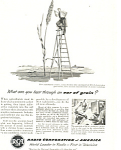 RCA Ear of Grain Ad ad0307