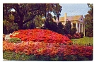 Click here to enlarge image and see more about item apr2853: Orton Plantation Wilmington NC Postcard apr2853