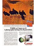 Click here to enlarge image and see more about item auc018401: Cannon F-1 Wildlife Waldrapp Ibis Ad