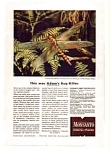 Click here to enlarge image and see more about item auc024608: Monsanto Insecticide Products Ad