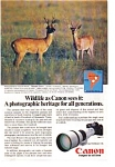 Click here to enlarge image and see more about item auc14a14: Canon Cameras AD auc14a14