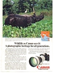 Click here to enlarge image and see more about item auc1614: Canon F-1 Wildlife Rhinoceros Ad
