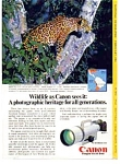 Click here to enlarge image and see more about item auc3216: Canon F-1 Wildlife Ad Jaguar