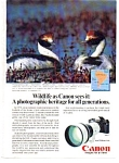 Click here to enlarge image and see more about item auc3217: Canon F 1 Wildlife Ad auc3217 Hooded Grebe