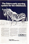 Click here to enlarge image and see more about item auc3619: South African Airways  Zebra Ad auc3619