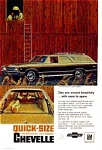 Chevrolet Chevelle Concours Custom Wagon  Ad
