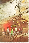 Canopy Hall Cave of the Winds CO Postcard cs0053