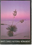 Click here to enlarge image and see more about item cs0090: Yuccas in White Sands National Monument, NM Postcard