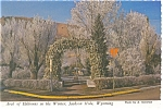 Arch of Elkhorns Jackson Hole WY Postcard cs0180