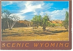 Scenic Wyoming The Old West Postcard