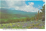 Click here to enlarge image and see more about item cs0184: Springtime in The Big Horn Mountains WY Postcard cs0184