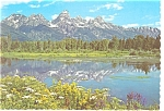 Black Tail Pond Grand Teton National Park WY Postcard cs0188