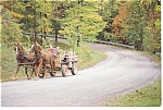 Click here to enlarge image and see more about item cs0223: Woodcrest Bruderhof Horse and  Wagon Postcard cs0223