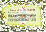 Click here to enlarge image and see more about item cs0224: Legend Of The Dogwood Postcard cs0224