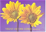 Trust in the Lord, Psalm 37:3 Postcard